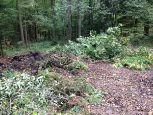 Östra Älvsjöskogen, en stor avfallsplats har växt fram längs parkvägen!