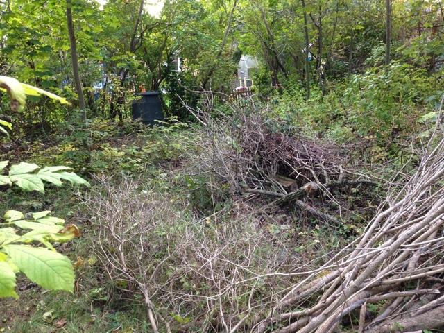 Flera av Vallvägens villaägare använder Långbrogårdsparken som trädgårdstipp! Detta är naturligtvis helt olagligt.