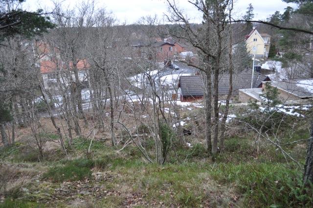 Stadens bit av Lingonbacken! Alla dessa ekar kommer att försvinna om tomten säljs och bebyggs enligt de planer som presenterats.
